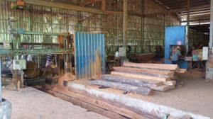 Warehouse & Sawmill Photos